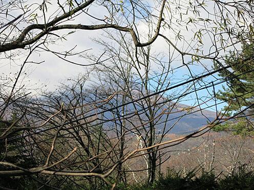 土地-北佐久郡軽井沢町大字長倉鶴溜 敷地内から浅間山を望むロケーションです。