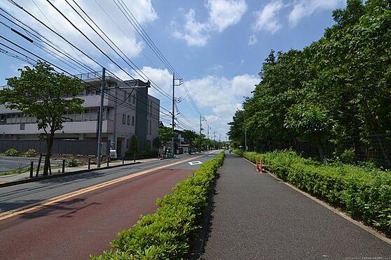 土地-世田谷区八幡山1丁目 道路を渡った歩道は広くジョギングされている方が多いです。