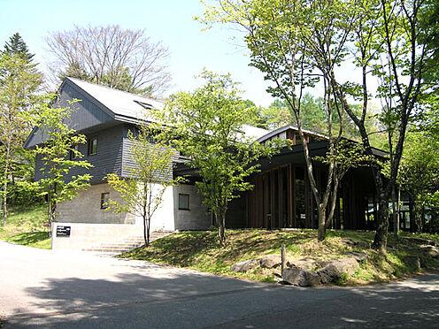 土地-北佐久郡軽井沢町大字長倉 お食事処もこのエリアはとても多く、飽きない場所になるでしょう。