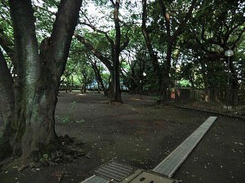 マンション(建物全部)-世田谷区上野毛4丁目 上野毛自然公園