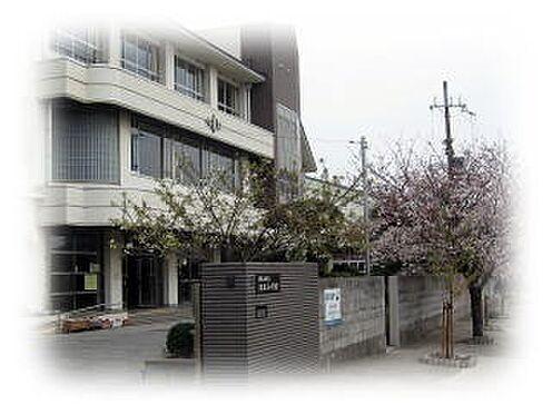 店舗(建物全部)-和歌山市松江北5丁目 【小学校】松江小学校まで292m