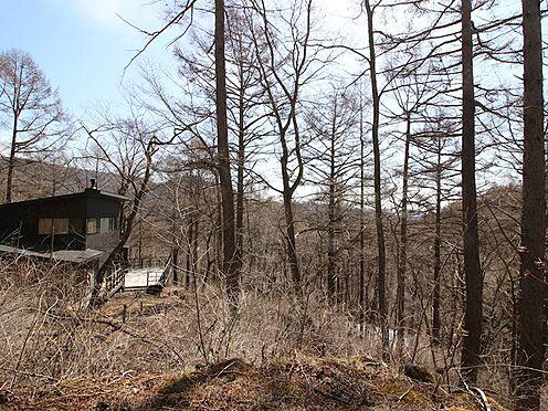 土地-北佐久郡軽井沢町大字軽井沢旧軽井沢 近隣にも素敵なお建物がございます。