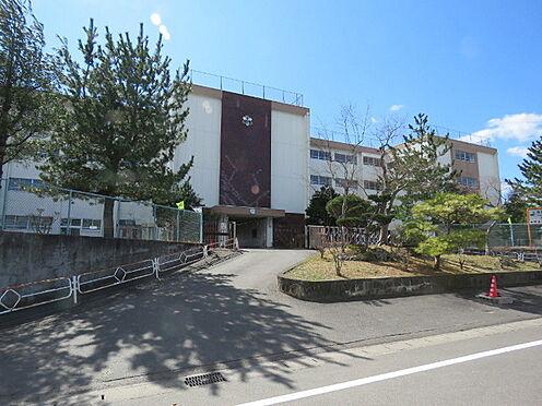 戸建賃貸-仙台市泉区将監11丁目 将監中央小学校 約100m