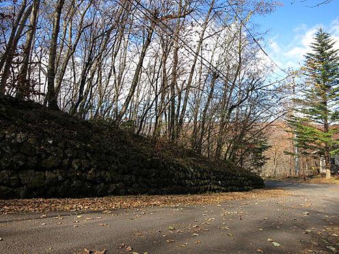 土地-北佐久郡軽井沢町大字長倉鶴溜 東側道路からの現地。広い舗装道路に面しています。