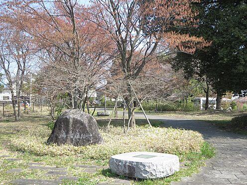 中古マンション-八王子市別所1丁目 浄瑠璃緑地(364m)