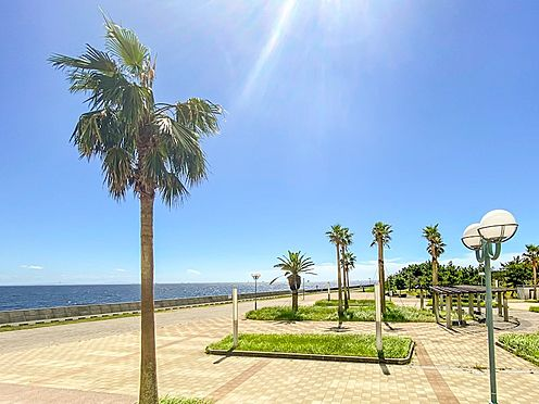 マンション(建物一部)-浦安市明海5丁目 海が見える総合公園まで徒歩3分。