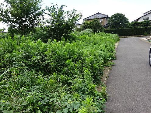土地-千葉市若葉区小倉台6丁目 前面道路より南→北