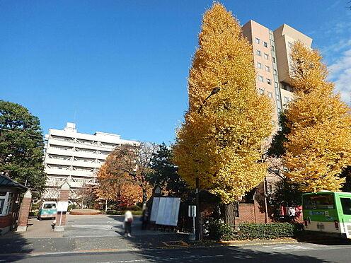 マンション(建物一部)-文京区目白台1丁目 日本女子大学・・・260m