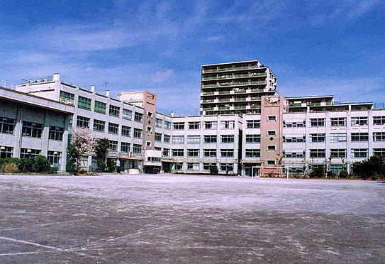 マンション(建物一部)-江戸川区中央2丁目 松江第三中学校 徒歩 約7分(約500m)