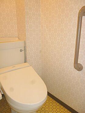 中古マンション-横須賀市グリーンハイツ トイレ