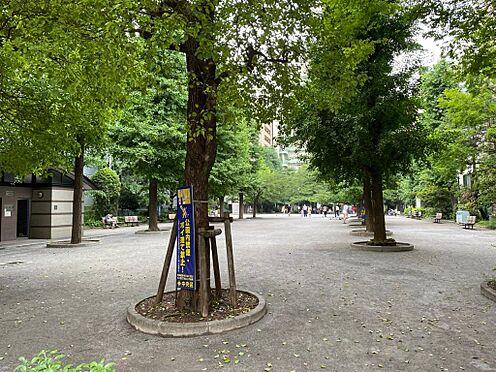 中古マンション-中央区日本橋小舟町 堀留記念公園