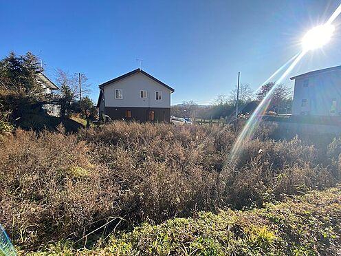 土地-北佐久郡軽井沢町大字長倉 敷地には日がしっかり当たります