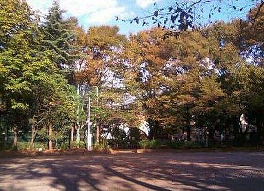 アパート-豊島区池袋本町4丁目 【公園】池袋本町公園まで557m