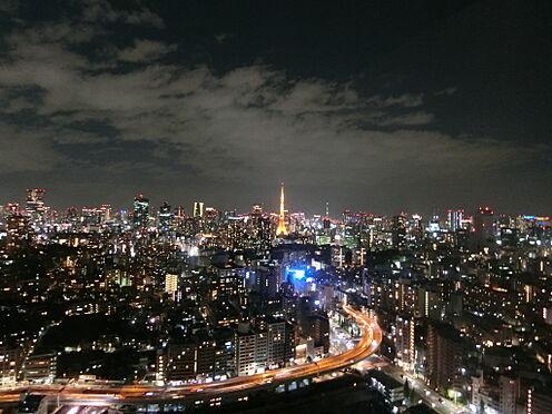中古マンション-港区白金1丁目 リビングからの眺望(夜景 六本木ヒルズ・東京タワー方面)