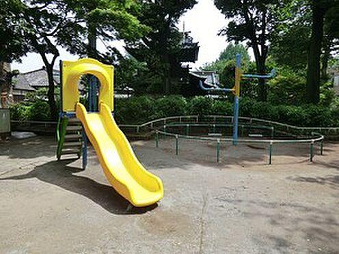 マンション(建物一部)-文京区白山5丁目 周辺環境:白山公園