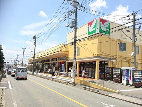中古マンション-桶川市鴨川1丁目 ヨークマート 桶川店(1556m)