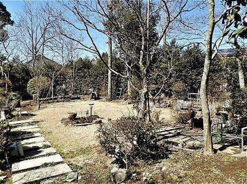 中古一戸建て-田方郡函南町平井南箱根ダイヤランド 非常にお手入れの行き届いた芝庭のようすです。西側に位置するので、陽当たりも良好です。