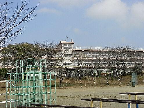 アパート-土浦市中神立町 土浦市立神立小学校(168m)