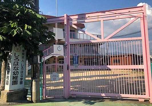 アパート-神戸市長田区宮川町4丁目 しろはな幼稚園 約600m 徒歩8分
