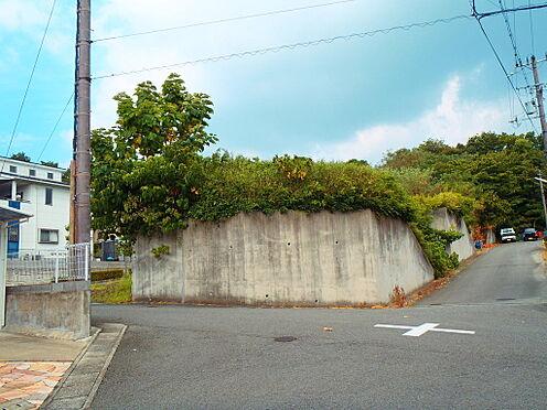 土地-岩出市桜台 現地写真:西側から撮影