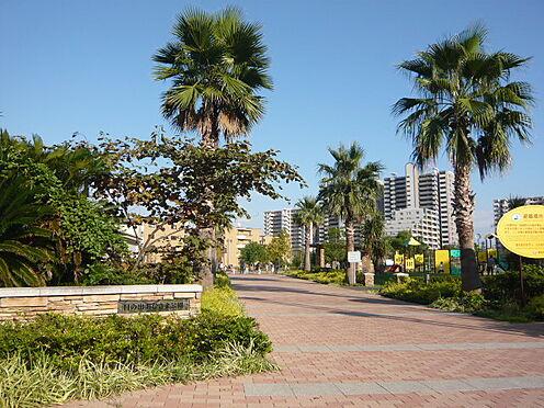 中古マンション-浦安市日の出2丁目 日の出おひさま公園(921m)