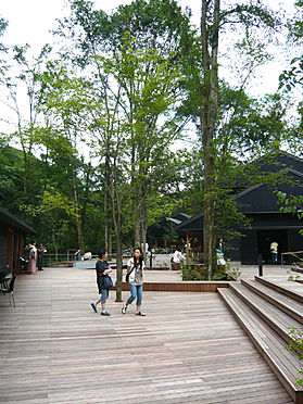 土地-北佐久郡軽井沢町大字長倉鶴溜 ハルニレテラスでは自然を楽しみながら食事を味わえます。