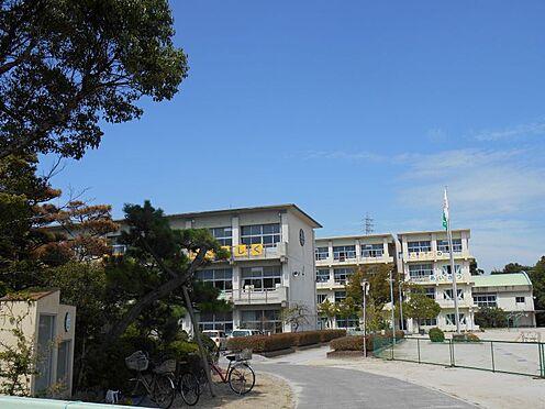 戸建賃貸-岡崎市緑丘3丁目 緑丘小学校まで約800m 徒歩約10分