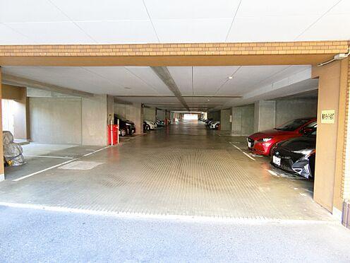 中古マンション-新潟市中央区花園1丁目 1階部分駐車場