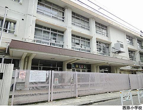 アパート-渋谷区西原3丁目 西原小学校