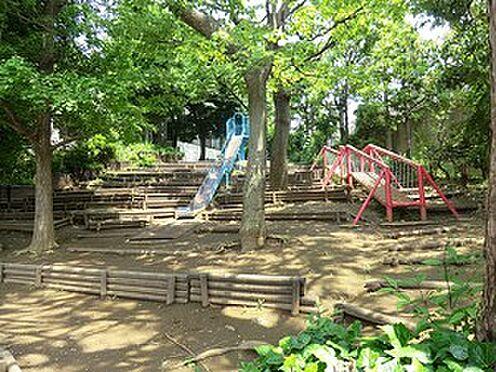 マンション(建物一部)-新宿区西新宿5丁目 周辺環境:北新宿公園