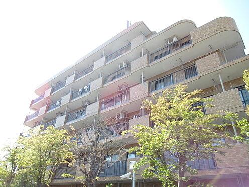 中古マンション-蓮田市藤ノ木1丁目 建物外観1