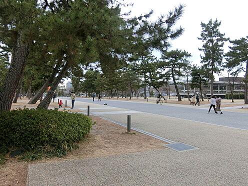 区分マンション-京都市左京区聖護院山王町 岡崎公園(840m)