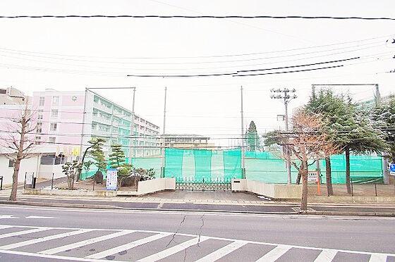 新築一戸建て-仙台市宮城野区原町5丁目 周辺