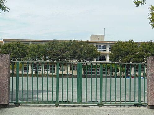 土地-西尾市道光寺町西縄 鶴城小学校 約1590m