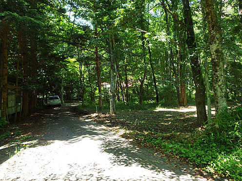 土地-北佐久郡軽井沢町大字長倉 敷地南側接道の様子です。