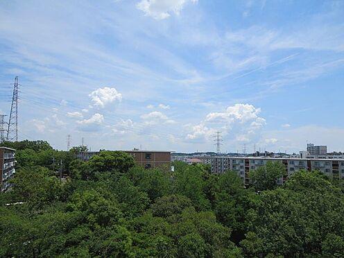 中古マンション-多摩市豊ヶ丘2丁目 南側眺望写真