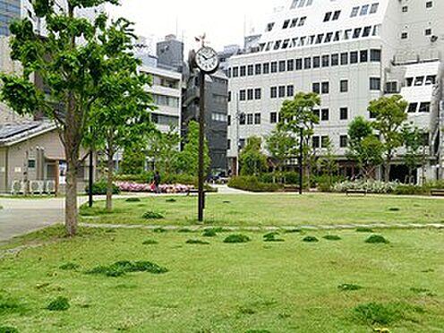 中古マンション-港区芝公園1丁目 周辺環境:南桜公園