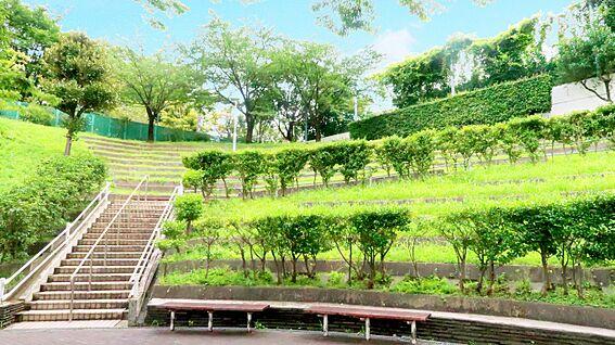 中古マンション-中野区上高田4丁目 マンション敷地内の植栽豊かな中庭