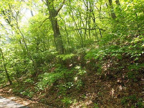 土地-北佐久郡軽井沢町大字長倉 南側に別荘を建てれば道路から高くなりプライベート空間になります。