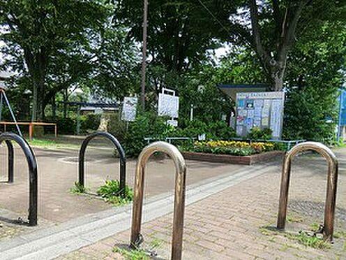 アパート-杉並区清水3丁目 周辺環境:中通公園