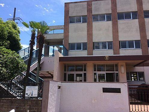 新築一戸建て-名古屋市中村区稲葉地町4丁目 稲西小学校 209m 徒歩約3分
