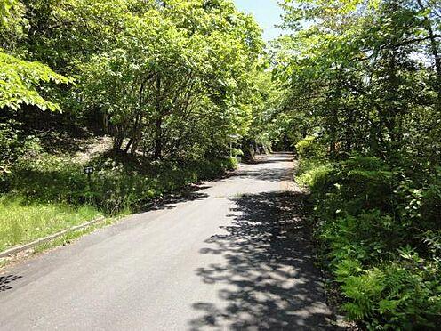 土地-北佐久郡軽井沢町大字長倉 道幅も広く、舗装された道路。