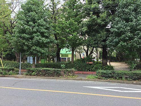 新築一戸建て-朝霞市栄町2丁目 本町児童公園(1121m)