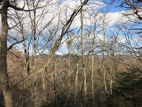 中古一戸建て-北佐久郡軽井沢町大字長倉 木立の向こうに山並みが見えるロケーションです。