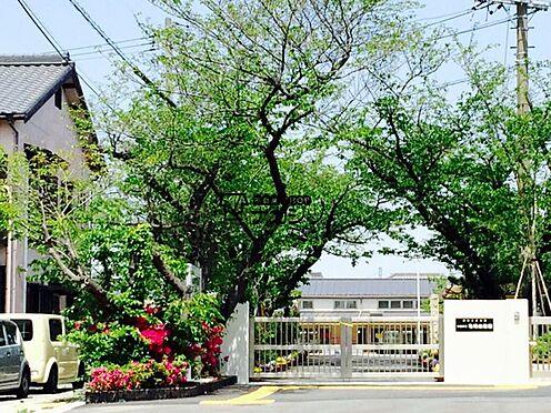 中古一戸建て-半田市のぞみが丘3丁目 亀崎幼稚園 894m 徒歩約11分