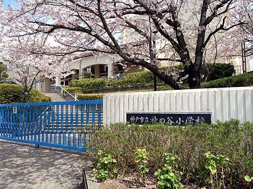 中古マンション-神戸市須磨区神の谷7丁目 神戸市立神の谷小学校