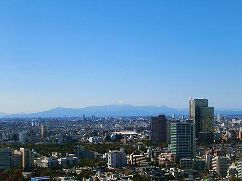 中古マンション-港区白金1丁目 リビングからの眺望(富士山方面・天候により見えない場合もあります。)
