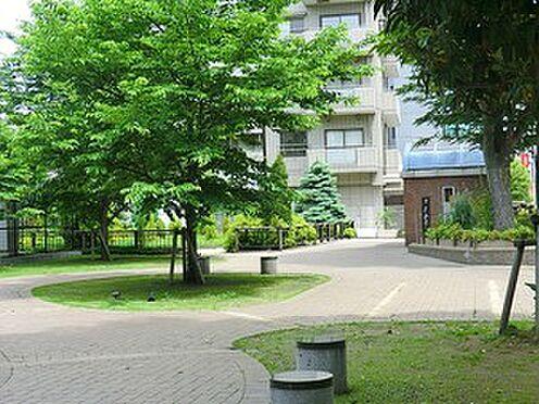 マンション(建物一部)-渋谷区神宮前1丁目 周辺環境:神宮通公園