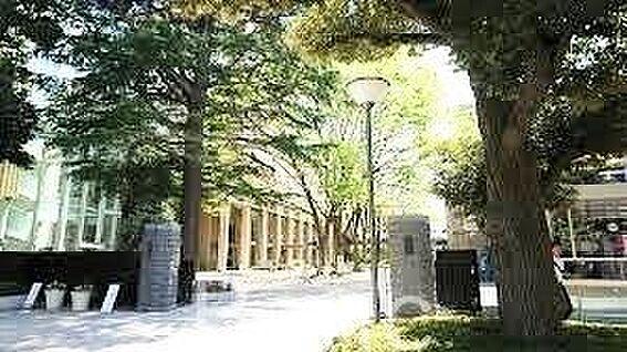 中古マンション-練馬区羽沢1丁目 私立武蔵高校 徒歩16分。 1250m