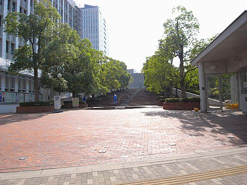 ビル(建物全部)-文京区白山1丁目 大学東洋大学通信教育部まで498m